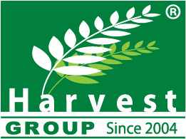 Greenlife Harvest Marketing - BW 115